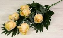 Vetva ruža x6JX1063