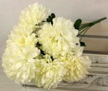Kytica chryzantéma x9JX2094-CR