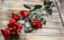 Vetva ruža x6JX1670